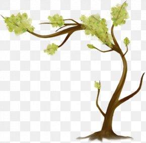 Tree - Tree Leaf Branch Clip Art PNG