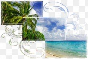 Coast Lagoon - Background Frame Summer Frame PNG