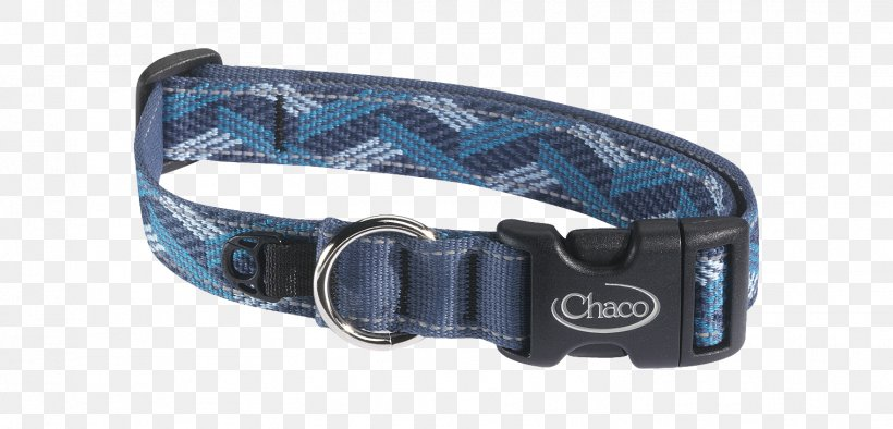 Dog Collar Rockford Leash, PNG, 1519x730px, Dog, Blue, Camping, Chaco, Clothing Accessories Download Free