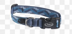 Dog With Collar - Dog Collar Rockford Leash PNG