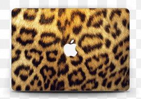 Cheetah - Animal Print Cheetah Clouded Leopard Zazzle Kerchief PNG