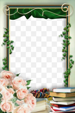 Green Plants And Windows - Picture Frame School Film Frame PNG
