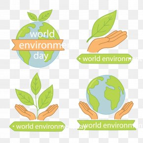 Vector Environment Day - World Environment Day Natural Environment Euclidean Vector Leaf PNG