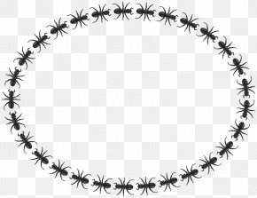 Frog Border - Ant Insect Circle Clip Art PNG
