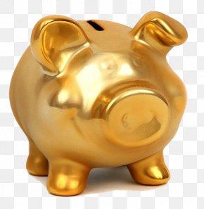 Piggy Piggy Bank - Piggy Bank Gold Coin Saving PNG