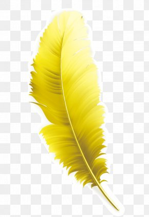 Yellow Feathers - Feather Yellow Computer File PNG