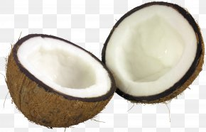 Coconut Image - Coconut Milk Coconut Bar Coconut Oil PNG