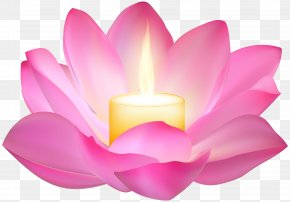 Lotus Candle Clip Art Image - Wallpaper PNG