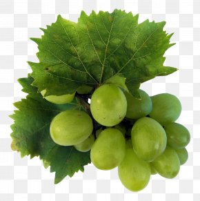 Green Grapes - Wine Sultana Riesling Grape Fruit PNG