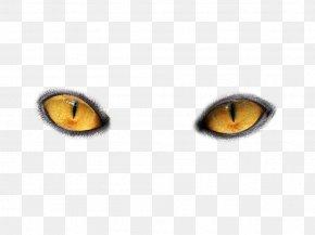 Eyes PNG Image - Cat's Eye Light PNG