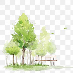 Watercolor Trees - How To Paint Trees In Watercolor Watercolor Painting Sketch PNG