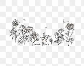 Leaf - Twig White Plant Stem Leaf Line Art PNG