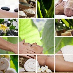 SPA Health Material - Day Spa Massage In LA Stone Massage PNG