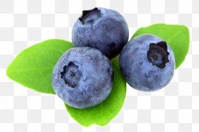 Berry - Juice Blueberry Muffin Desktop Wallpaper PNG