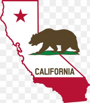California Map Cliparts - Law Of California Court Plaintiff PNG