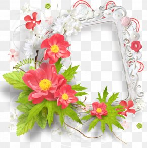 Mothers Day Backgrounds Borders Flowers - Picture Frames Image Clip Art Flower Frame PNG