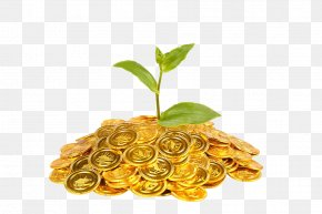 Gold Coins And Plants - Gold Coin Plant Finance PNG