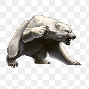 White Angry Bear Image - Fancy Bear Security Hacker World Anti-Doping Agency PNG