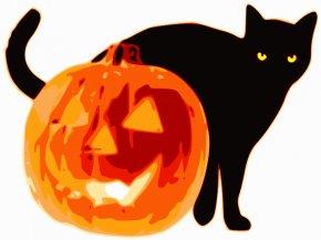 Jack O Lantern Clipart - Cat Pumpkin Halloween Jack-o-lantern Clip Art PNG