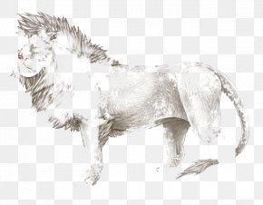 Lion - Lion Dog Cat Canidae Terrestrial Animal PNG