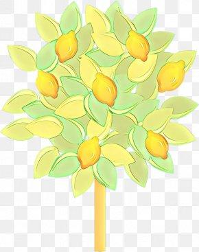 Cut Flowers Citrus - Yellow Green Plant Leaf Flower PNG