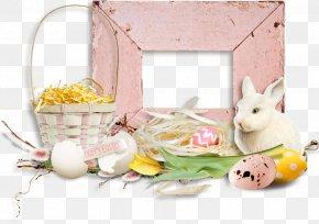 Easter - Easter Bunny Leporids Easter Egg Rabbit PNG