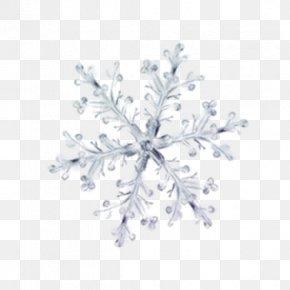 Winter Snow Flower Pattern Decorative Elements - Winter Petal Ice Pattern PNG