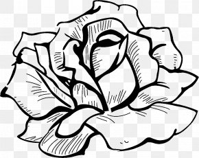 Flower - Drawing Flower Icon PNG