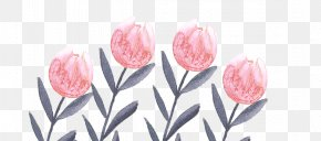 Watercolor Wedding - Flowering Plant Tulip Cut Flowers Floristry PNG