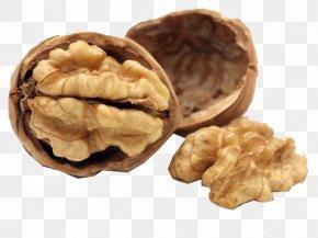 Walnut - Nutrient Food Nutrition Dietary Supplement Walnut PNG