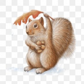 Hand-painted Squirrel - Squirrel Chipmunk Art Watercolor Painting Drawing PNG