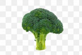 Cauliflower - Broccoli Vegetable Cauliflower PNG