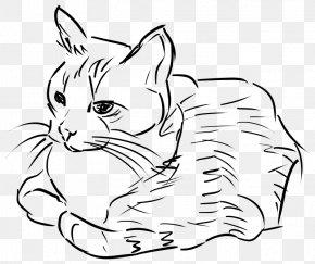 Cat - Cat Line Art Drawing Clip Art PNG