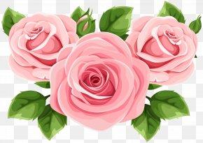 Garden Roses Clip Art Tattoo Art PNG