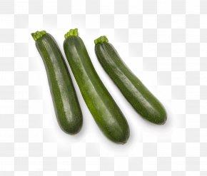 Cucumber - Pickled Cucumber Summer Squash Zucchini Cucurbita Pepo PNG