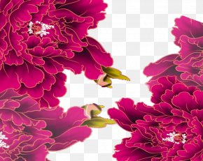 Big Peony Chinese Wind Pattern - Moutan Peony Floral Design PNG