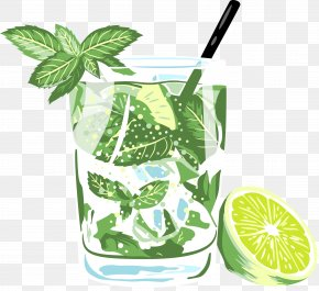 Hand Painted Summer Refreshing Drink - Orange Juice Soft Drink Mojito Cocktail PNG