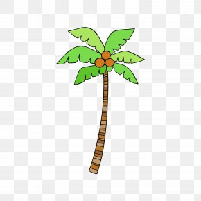Vector Coconut Tree - Euclidean Vector Coconut PNG
