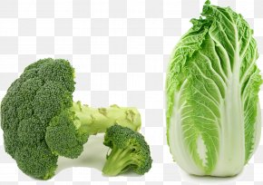 Broccoli Cabbage - Asian Cuisine Choy Sum Chinese Cabbage Napa Cabbage Vegetable PNG