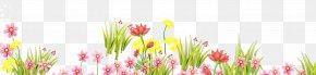 Cut Flowers Floral Design - Floral Spring Flowers PNG