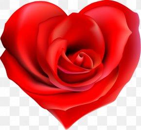 Kiss - Garden Roses Heart Flower Clip Art PNG