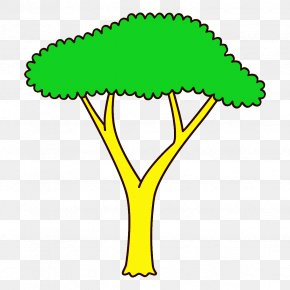 Plant Stem Tree - Green Yellow Leaf Plant Tree PNG