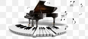 Piano - Digital Piano Steinway & Sons Musical Instrument Grand Piano PNG
