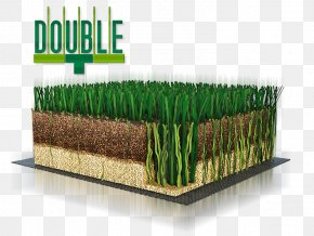 Football Field Lawn - Lawn Artificial Turf Vetiver Green FIFA 18 PNG