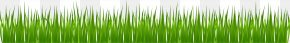 Green Simple Grass - Drawing Olympics Opening Ceremony Clip Art PNG