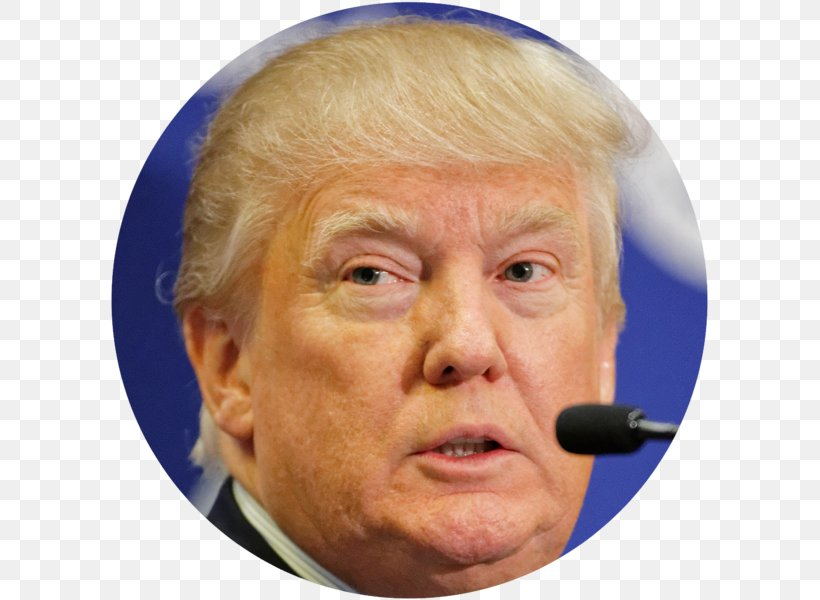 President Of The United States Donald Trump Prank Call US Presidential Election 2016, PNG, 599x600px, United States, Barack Obama, Cheek, Chin, Close Up Download Free