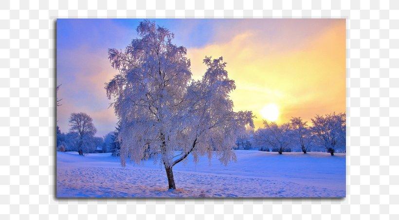 Landscape Winter Desktop Wallpaper Snow Nature Png