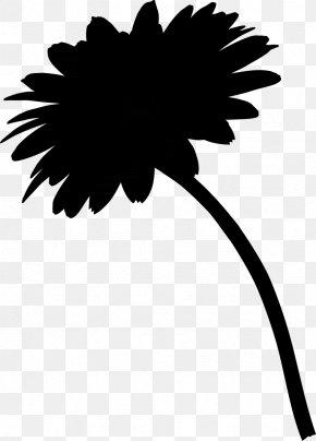 Leaf Daisy Family Clip Art Plant Stem Silhouette PNG