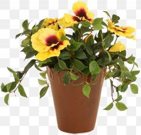 Flower - Flowerpot Crock Cut Flowers PNG