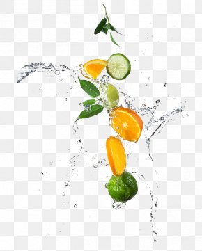 Fruits And Water - Lemon Water Lime Orange Photography PNG